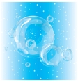 Group bubbles on a blue background vector