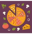 Pizza icon minimal design tasty pizza slices vector