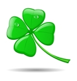 Four leaf clover isolated on white for st patrick vector
