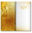 Gold crystal abstract pattern business design vector