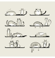 Funny cats on shelves vector