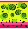 Watermelon and seeds from watermelon vector