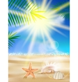 Day with sand shells and palm leaves vector
