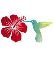 Hummingbird and red hibiscus flower vector