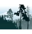 Forest landscape vector