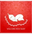 New baby red shower invitation vector