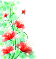 Flower beauty back vector