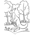 Kangaroo in the forest vector