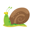 Snail cute vector