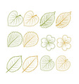 Hand drawn leaves set vector