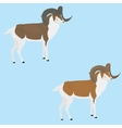 Goat with long horn vector