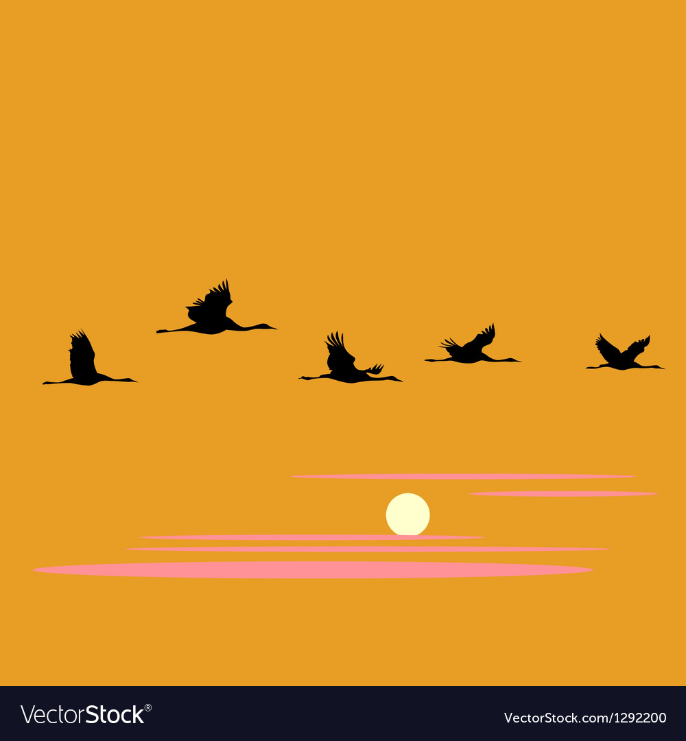 Crane pack and sunset vector