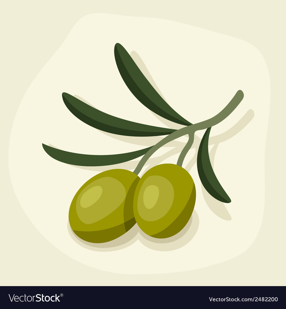Stylized of fresh ripe olive branch vector | Price: 1 Credit (USD $1)