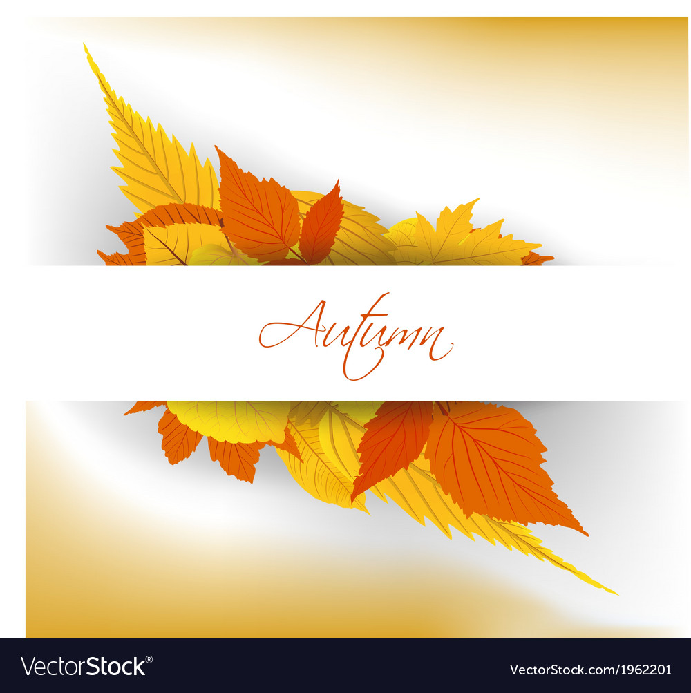 Colorful autumn leaves background vector | Price: 1 Credit (USD $1)