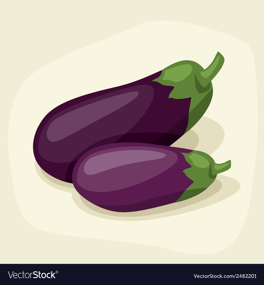 Stylized of fresh ripe eggplants vector | Price: 1 Credit (USD $1)