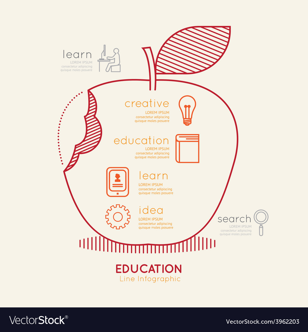 Flat linear infographic education apple outline vector | Price: 1 Credit (USD $1)