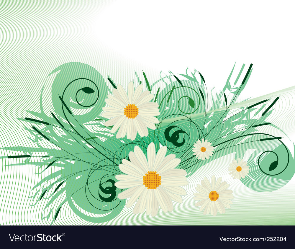 Abstract background with white daisies vector | Price: 1 Credit (USD $1)