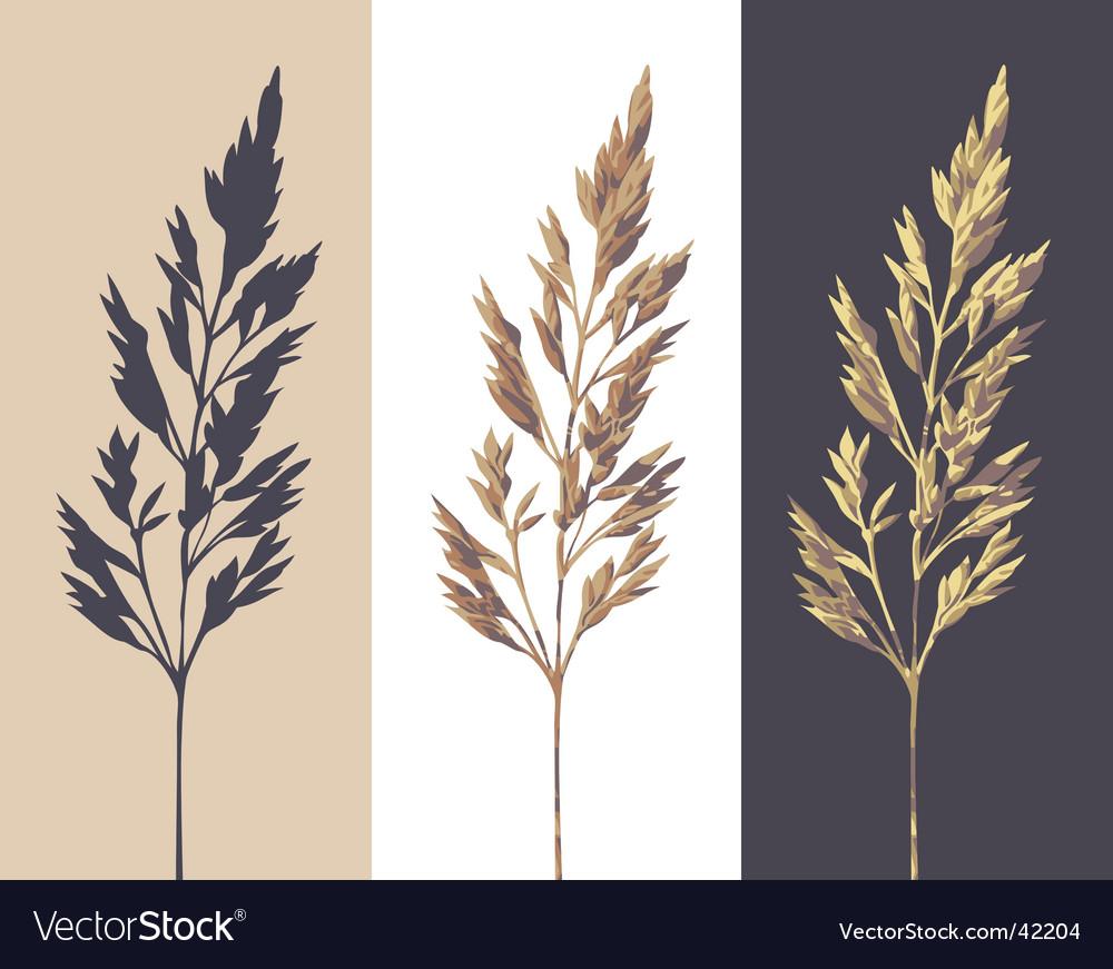 Herb vector   Price: 1 Credit (USD $1)
