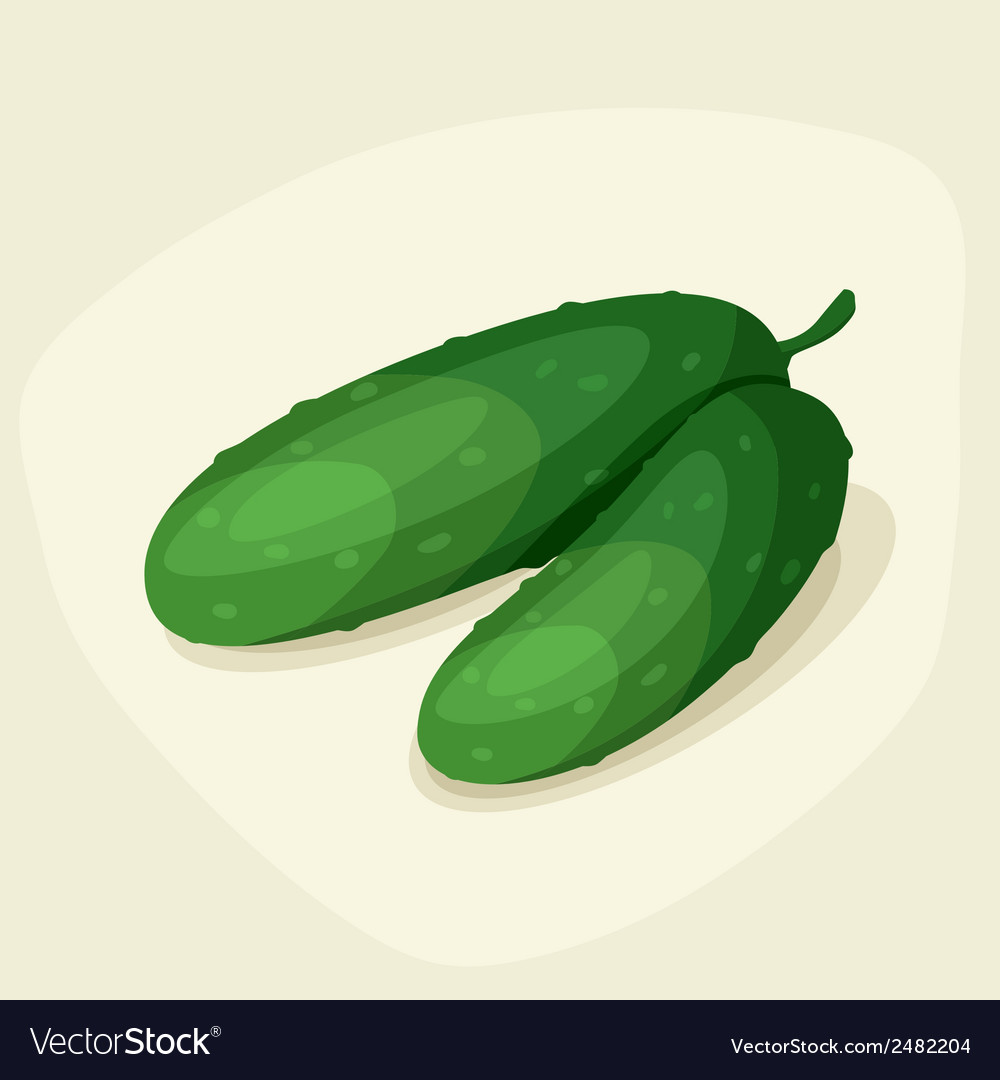 Stylized of fresh ripe cucumbers vector | Price: 1 Credit (USD $1)