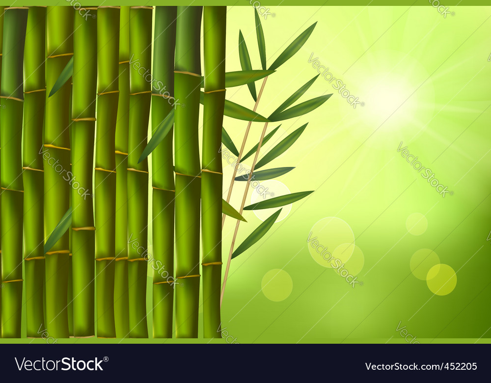 Green bamboo background with sunny vector | Price: 1 Credit (USD $1)