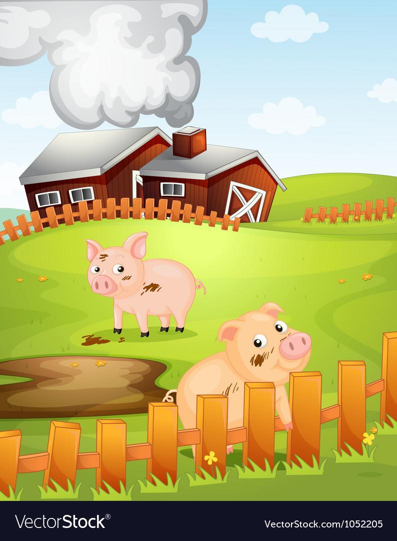 Pigs vector | Price: 3 Credit (USD $3)