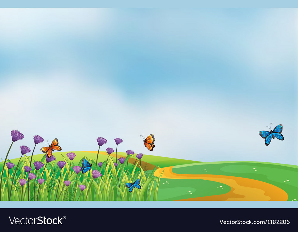 Butterflies in field vector | Price: 1 Credit (USD $1)