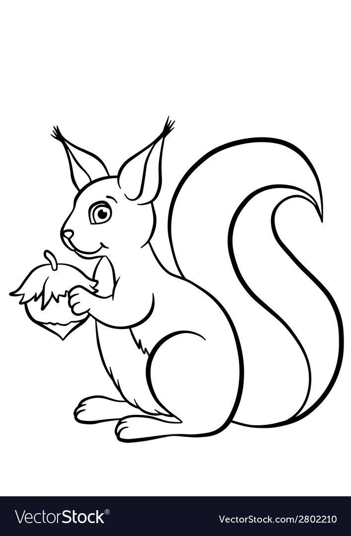 Little cute squirrel with huzelnut vector | Price: 1 Credit (USD $1)