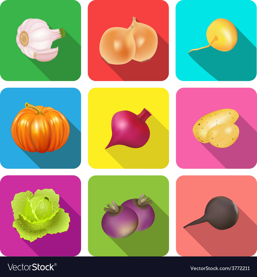 Set of icons on a theme vegetables vector | Price: 1 Credit (USD $1)