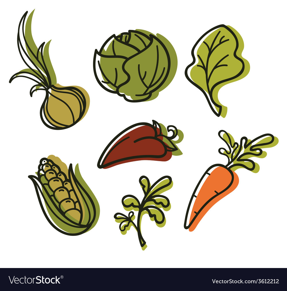 Hand drawn vegetables vector | Price: 1 Credit (USD $1)