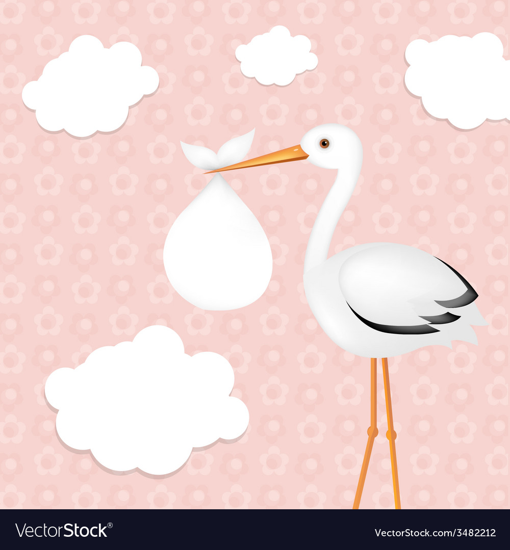 Stork with girl baby vector | Price: 1 Credit (USD $1)