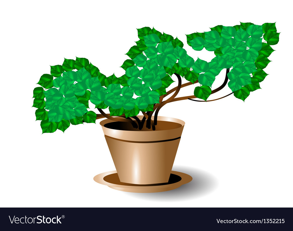 Symbol of growth vector | Price: 1 Credit (USD $1)