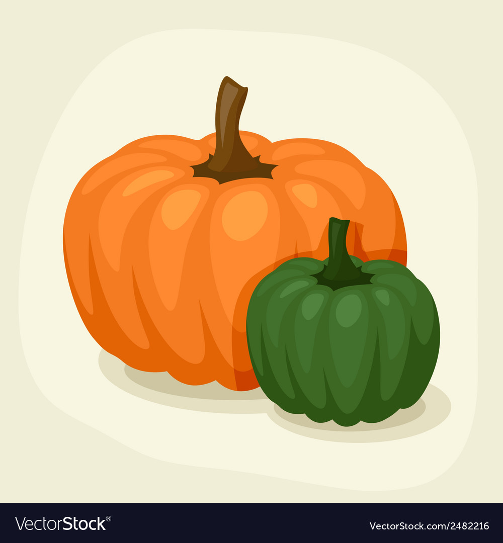 Stylized of fresh ripe pumpkins vector | Price: 1 Credit (USD $1)