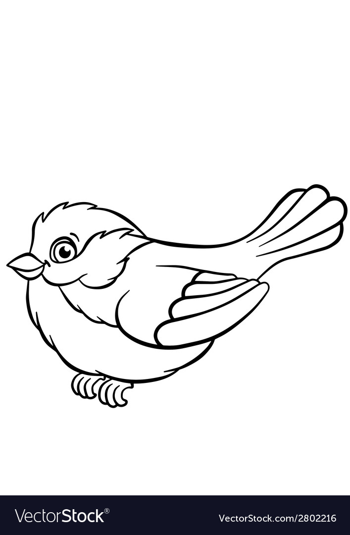 Titmouse on the ash tree vector | Price: 1 Credit (USD $1)