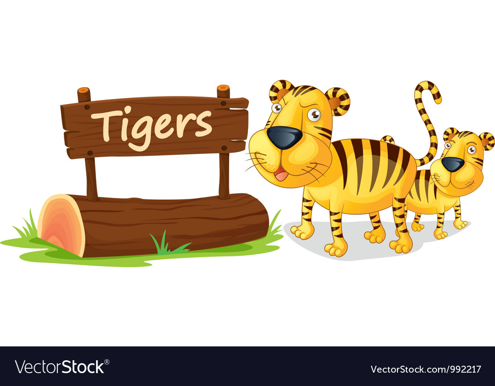 Tiger zoo sign vector | Price: 1 Credit (USD $1)