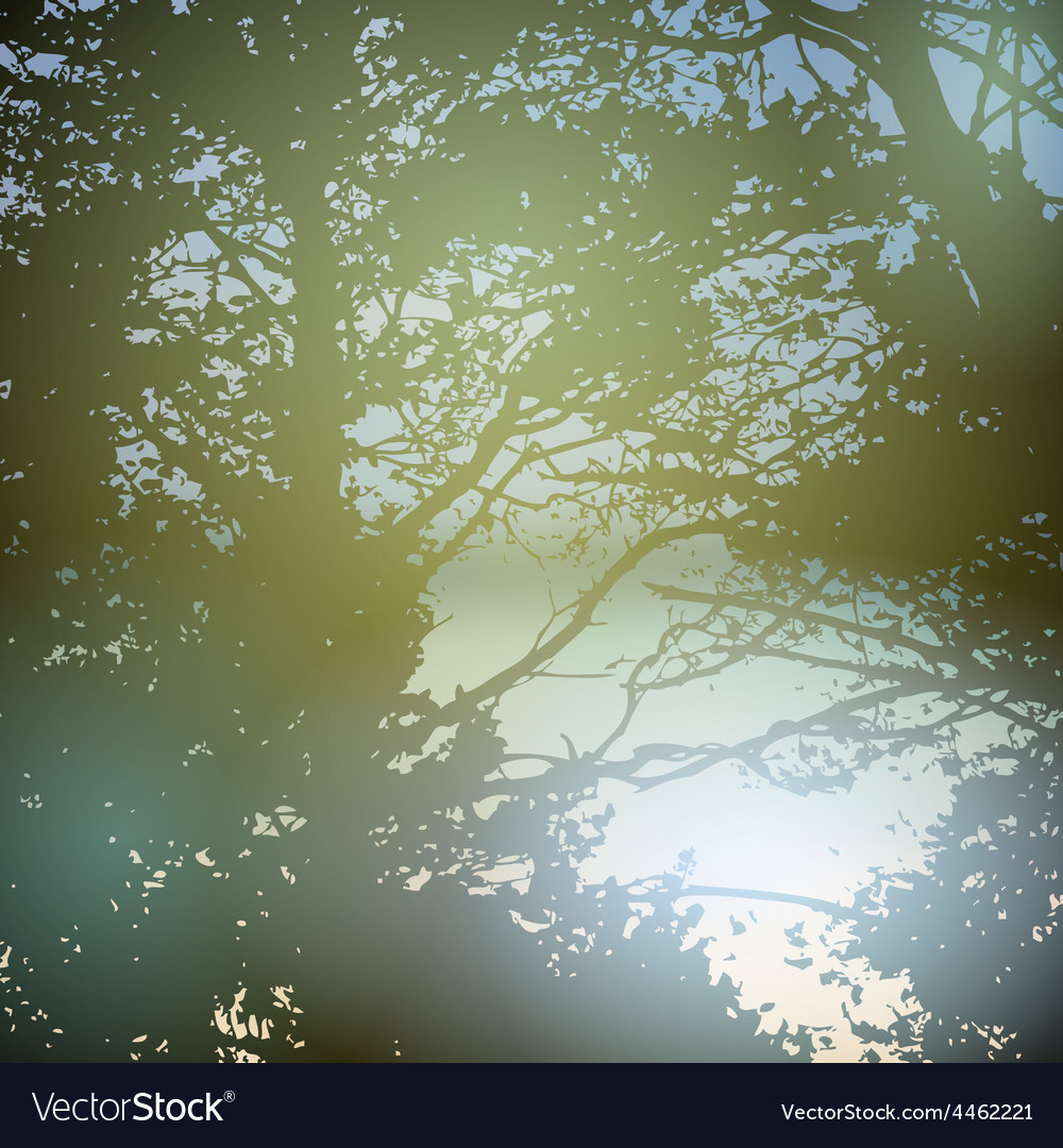 Summer design forest nature green wood sunlight vector | Price: 1 Credit (USD $1)