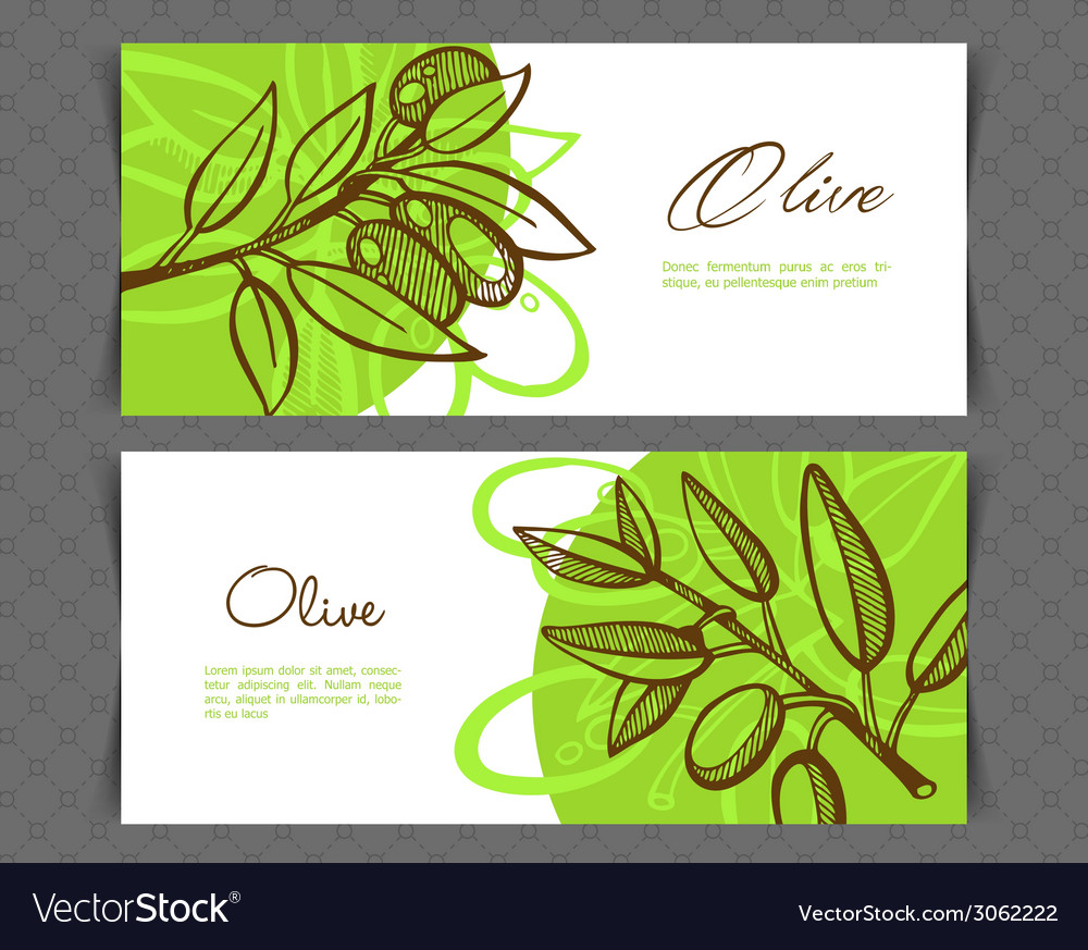 Hand-drawing olive vector | Price: 1 Credit (USD $1)