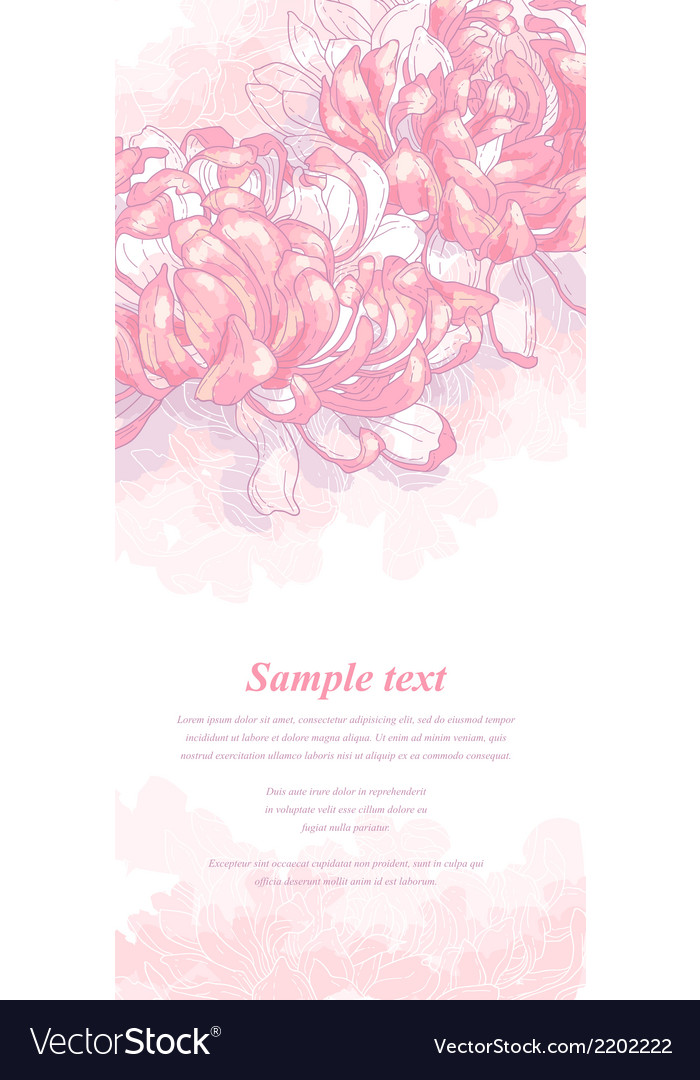 Romantic background with pink chrysanthemum vector | Price: 1 Credit (USD $1)