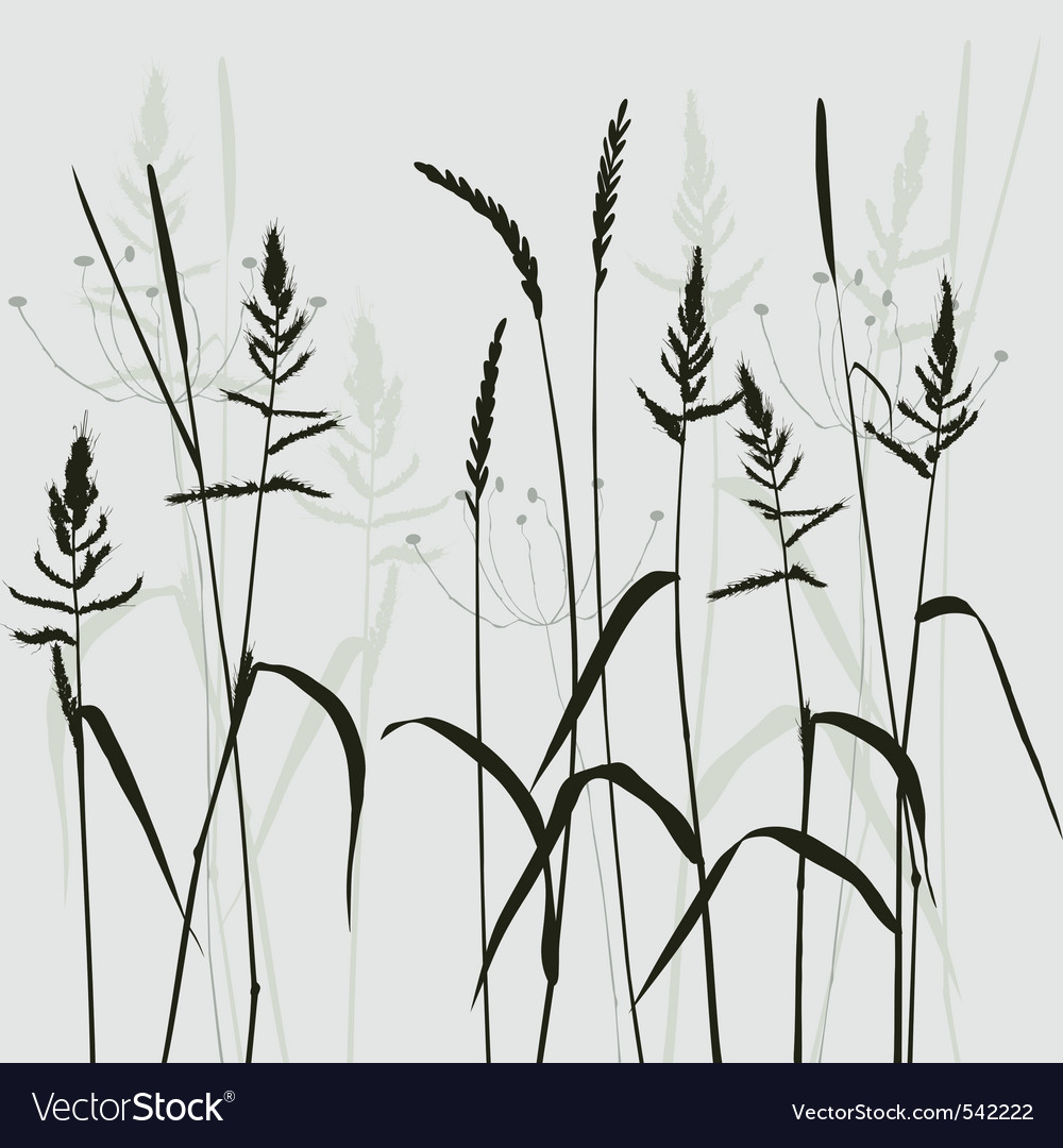 Wild grass vector | Price: 1 Credit (USD $1)