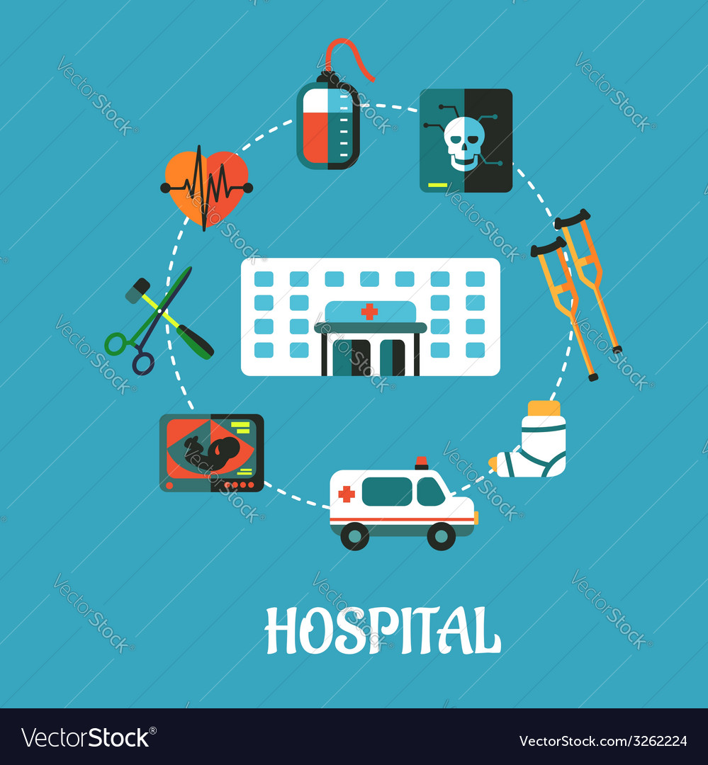 Hospital flat inforgraphic design vector | Price: 1 Credit (USD $1)