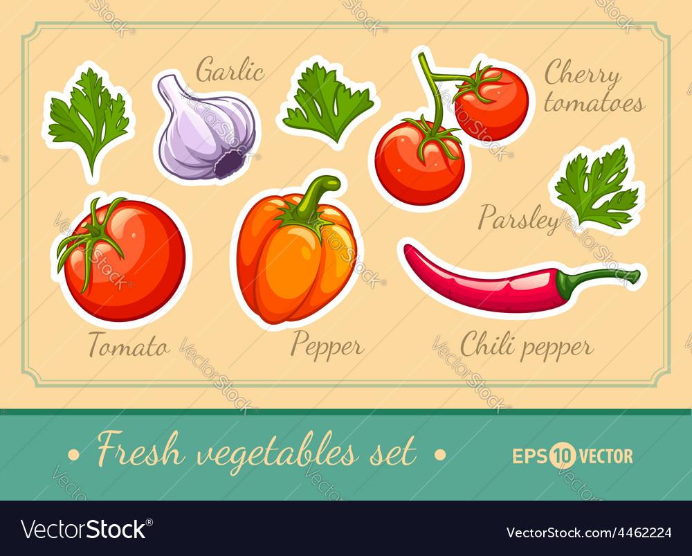 Set of fresh vegetables vector | Price: 3 Credit (USD $3)