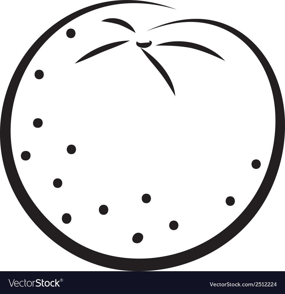 Sketch of orange vector | Price: 1 Credit (USD $1)
