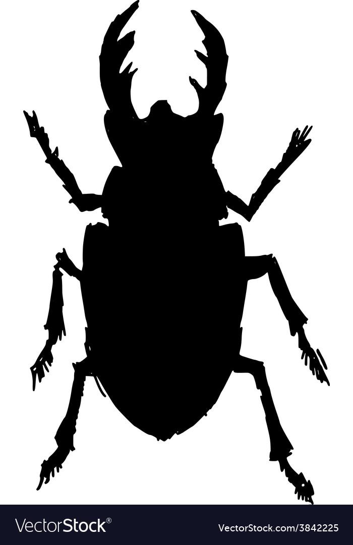 Stag-beetle vector | Price: 1 Credit (USD $1)