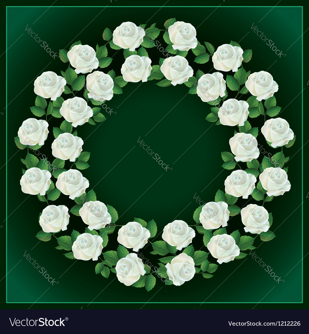 Ornament of white roses element for design vector