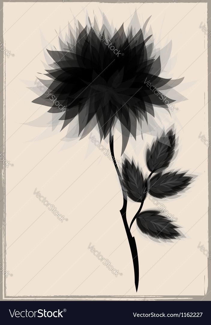 Beautiful black flower surrounded vector | Price: 1 Credit (USD $1)