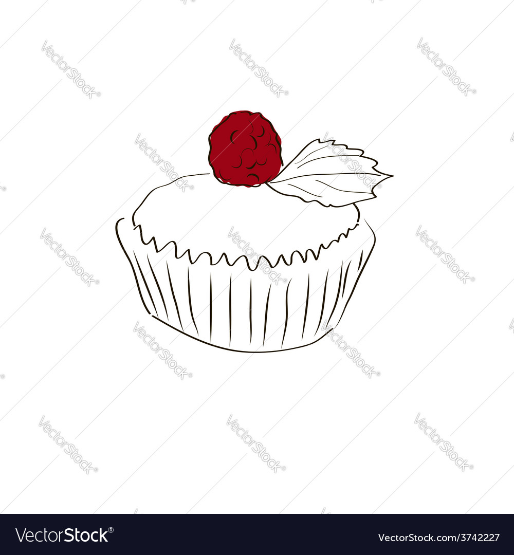 Muffin sketch vector | Price: 1 Credit (USD $1)