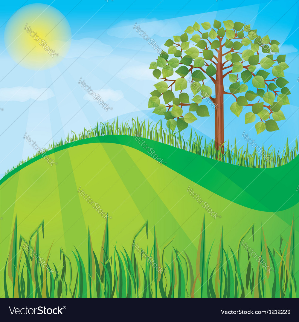 Summer or spring nature background with green tree vector | Price: 1 Credit (USD $1)