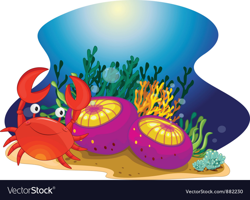 Crab and reef vector | Price: 3 Credit (USD $3)