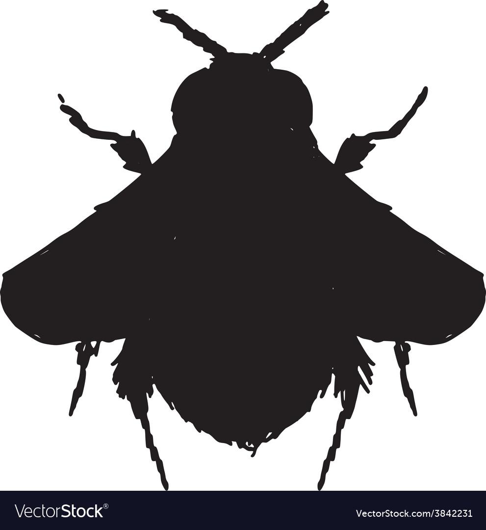 Bumblebee vector | Price: 1 Credit (USD $1)