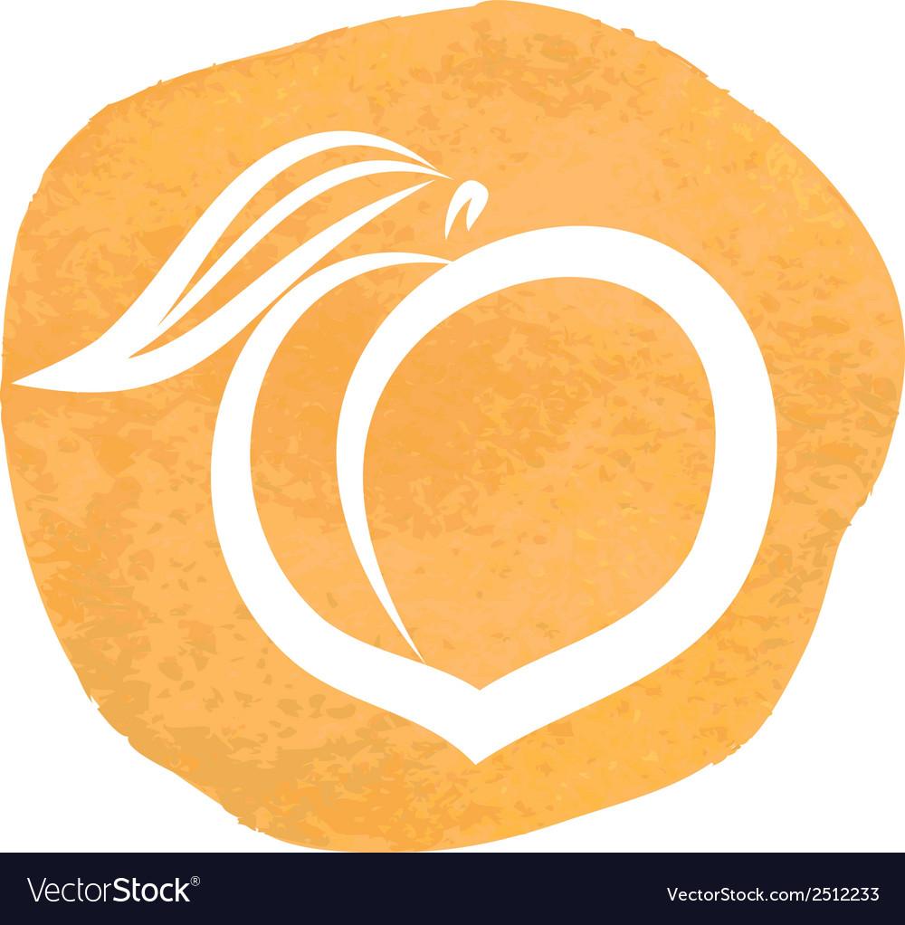Sketch of peach vector | Price: 1 Credit (USD $1)