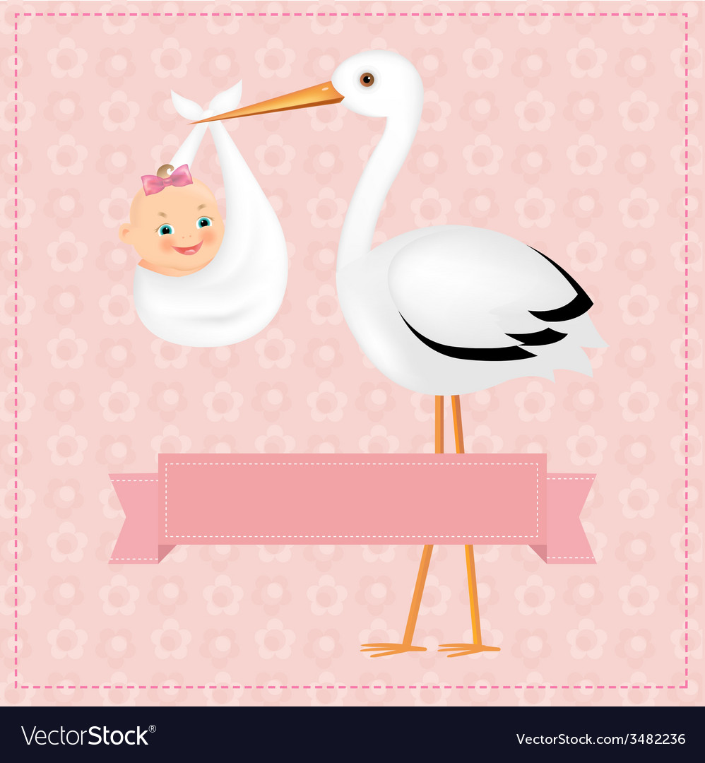 Poster stork with baby girl vector | Price: 1 Credit (USD $1)